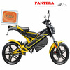 PT-E001 Portable Cheap New Model 1500W EEC Chinese Supplier Electric Folding Electric Motorcycle Sidecar