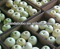 Unique Fresh White Apple Fruits