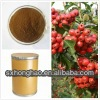 100% Natural Hawthorn Berry P.E