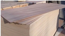 India/Thailand/Middle East Market Plywood
