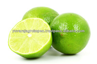 Fresh Lemon Supplier / Manufacture in India