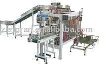 GFDP/10 Automatic Bag Feeding Packing Machine, bag feeding and packaging machine