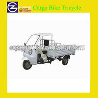 ABS Material Cabin Cargo Bike Tricycle For Sale