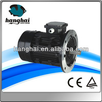 IE2 AC Three Phase Electric Motor