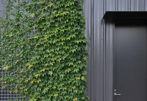 Klettergerüst Pflanzen Holz : Klettern klettergerüst für pflanzen buy