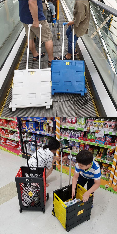 OEM di Alta Qualità 2 Ruote di Plastica Shopping Go Cart pieghevole rotolamento carrello