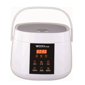 Korean style square touch screen smart rice-steam-stew-cake-congee multi cooker