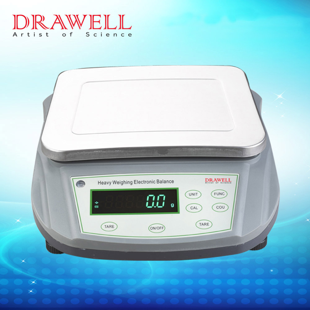 Large Capacity Balance Scale Electronic Scale Digital Balance