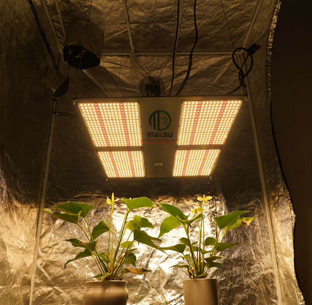 Wholesale Lm301b/lm301h/lm561c S6  Boards Hydroponic Full Spectrum Led Grow Light Plant Lamp Indoor Plants Garden 660nm