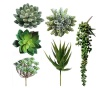 /product-detail/amazon-hotsale-ecofriendly-various-kinds-of-artificial-mini-succulent-for-table-decoration-62004012032.html