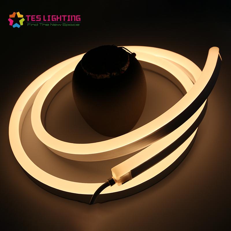 Custom IP68 Waterproof Outdoor 16*16 24v Strip Lighting Led Neon Flex Rope Light