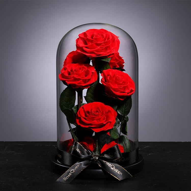 Diawetkan Mawar Di Kubah Kaca dengan Lampu LED dan Dasar Kayu untuk Dekorasi Rumah
