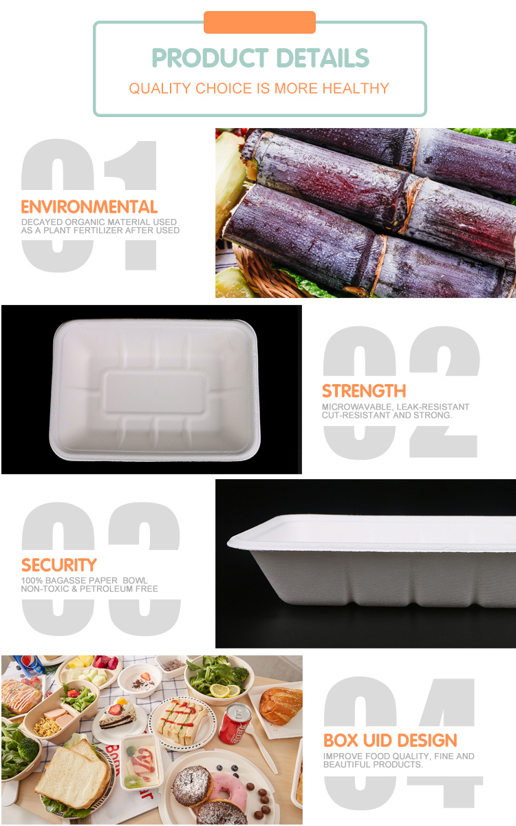 Biodegradable Sugarcane Fiber Baggasse rectangular fruits tray