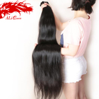 Ali Queen Unprocessed Hair Dyeable Silky Straight 40 Inch Hair Cuticle Aligned Raw Virgin Human 100% Brazilian Hair