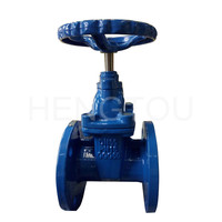 DIN 3352 F4 F5 Ductile Iron PN25 Resilient Seated Gate Valve