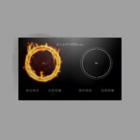 Cook Copper Coil Morden Type Kitchen Appliance Induction Cooker