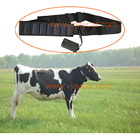 GPS Tracker 2G Big Battery 20000mAh Solar Collar For Cow Sheep Cattle Horse Camel hunting dog pigeon Animal gps tracking