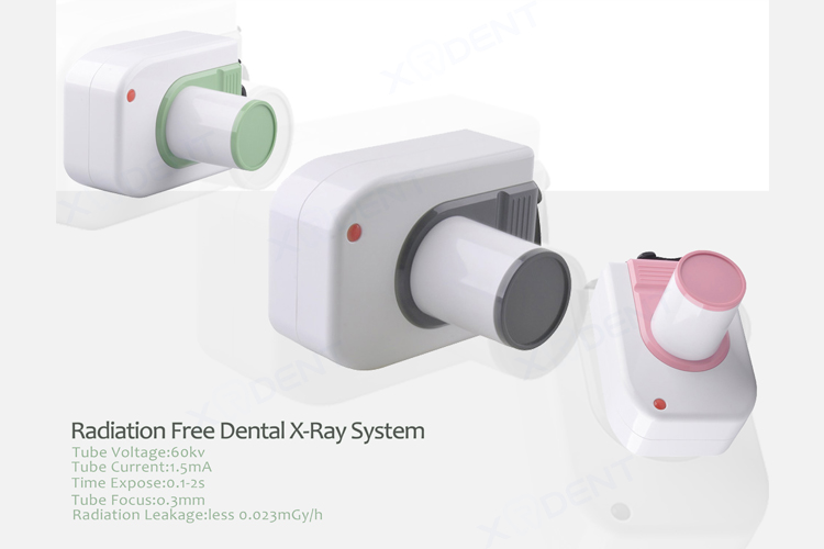 Grey Color China Digital Dental X Ray Machine