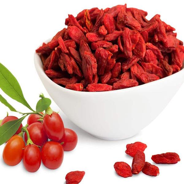 High Quality 100% Pure Natural Fresh Dried Organic Chinese Wolfberry/ Lycium / Goji berry