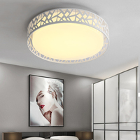Modern indoor home room decorating lighting iron dimmable led light fixture ceiling