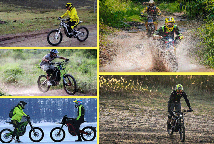 Sur-Ron Licht Bee Green Road Elektrische Mountain Dirt Bike