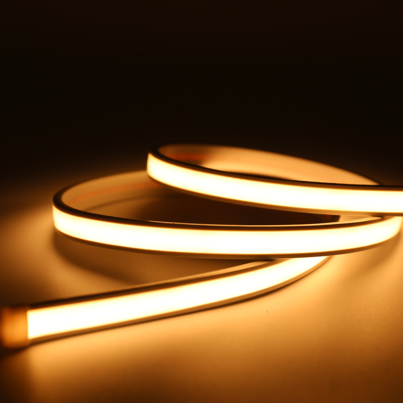 Professional Manufacturer LED Flexible Neon Strip Light IP68 Waterproof 5m/roll