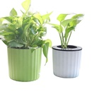 Flower Pot Brown Aisimi Plastic Planter Flower Pot Brown White Pot