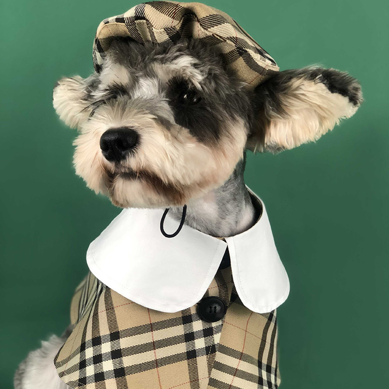 Classic checked pattern pet accessories elegant dog hat and dog cape party clothes