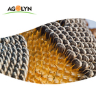AGOLYN Big Size High Quality Sunflower Seeds