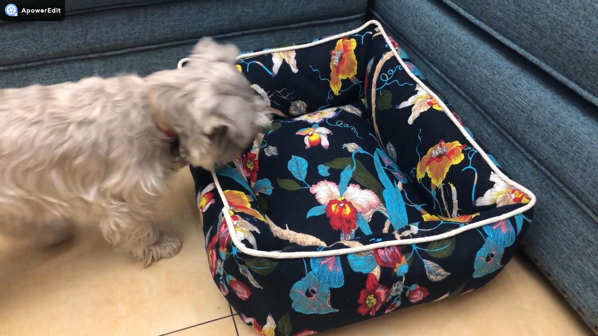 Venta al por mayor de cojín de perro de impresión Rectangular suave lavable de Estilo Vintage sofá de mascota cama de perro de lujo ortopédica para perro