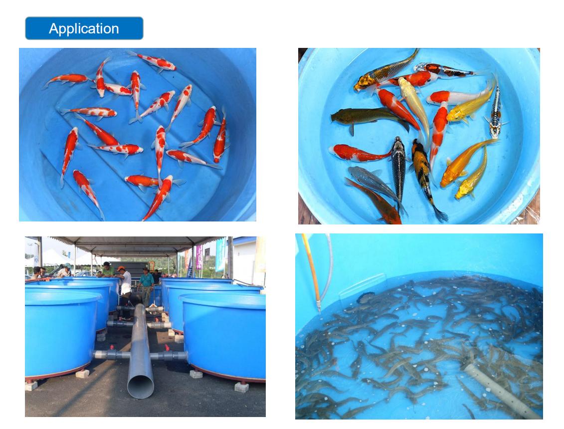 De alta resistencia de superficie lisa de fibra de vidrio, plástico reforzado con pescado de la acuicultura tanque