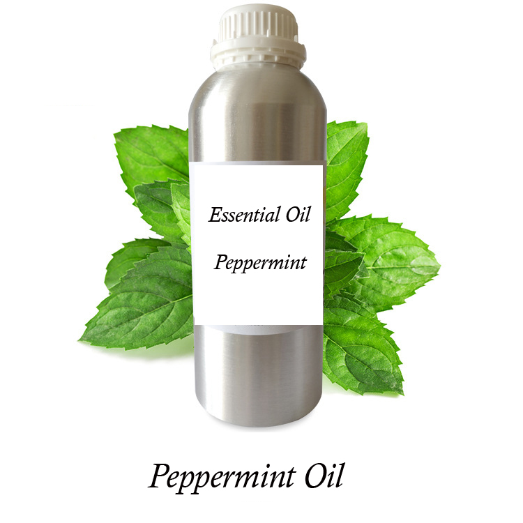 Bulk Natural Plant Extract Health Care Peppermint Essential Oil