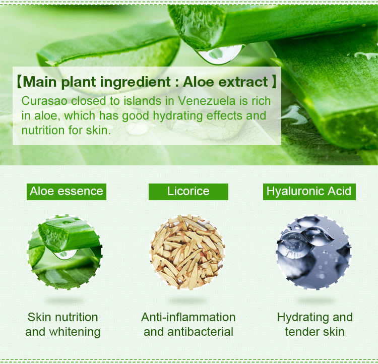 Repair Antioxidant Skin Care Anti Acne And Moisturizing Aloe Extract Face Lotion