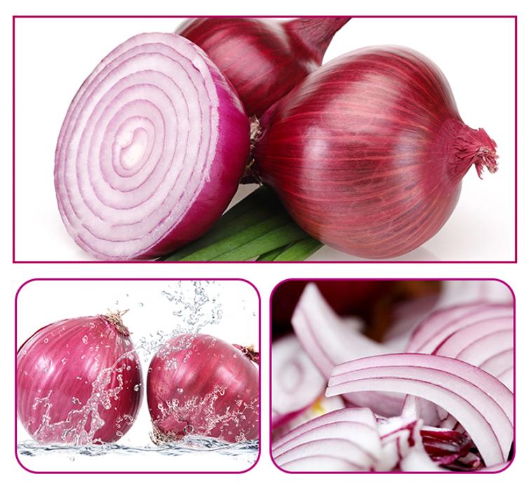 Fresh excellent grade vegetable best price red onion