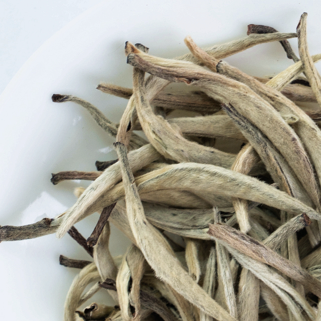 2021 Factory Hot Sale White Tea Manufactures Silver Needle Tea For Private Label - 4uTea | 4uTea.com