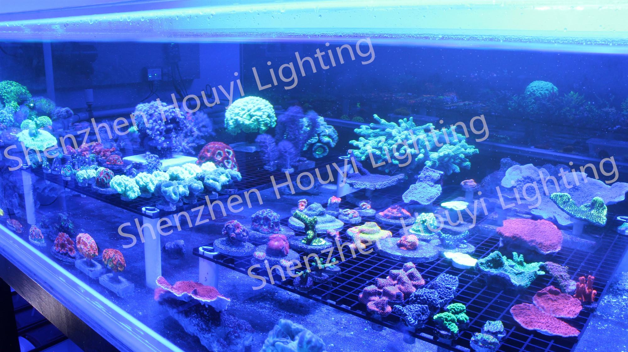 Luzes de aquário led de espectro completo smart wifi para plantas marinhas que crescem