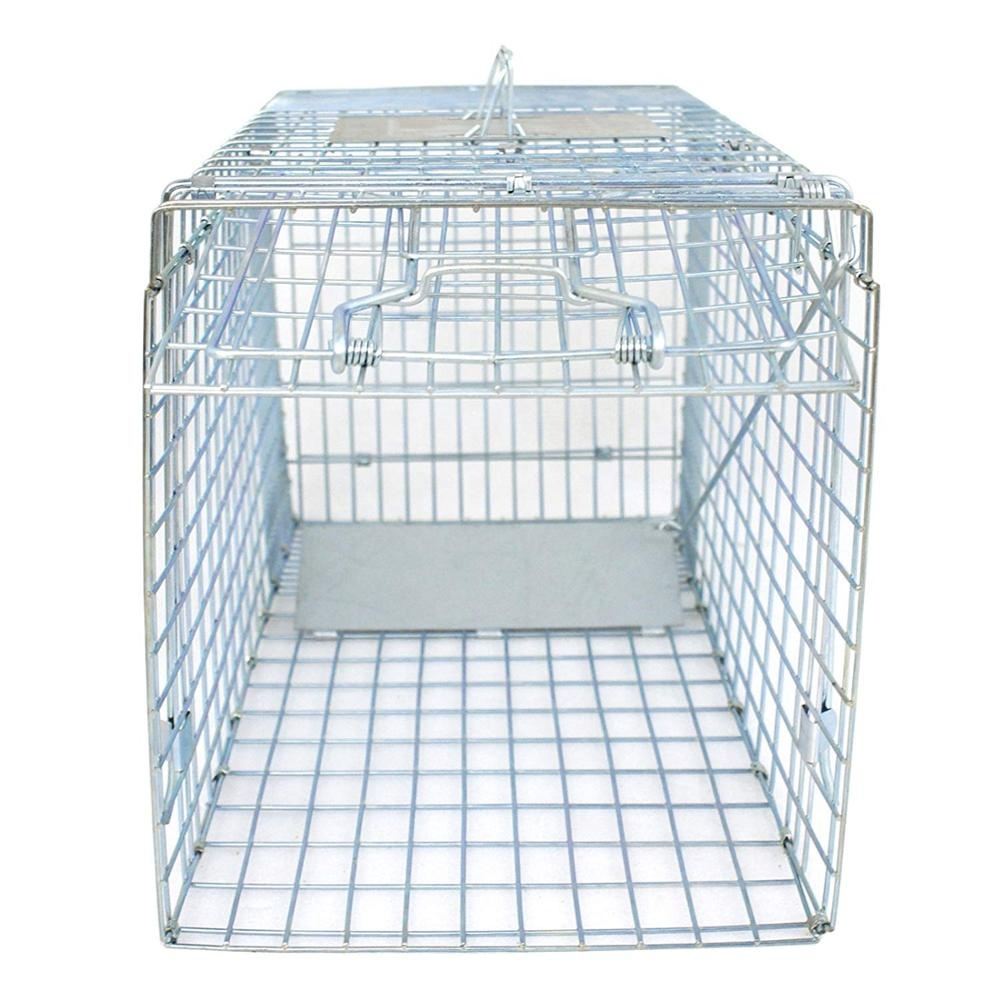 """32"""" Large 1-Door Live Animal Trap Catch Release Humane Rodent Cage for Raccoons, Cats, Groundhogs, Opossums"""