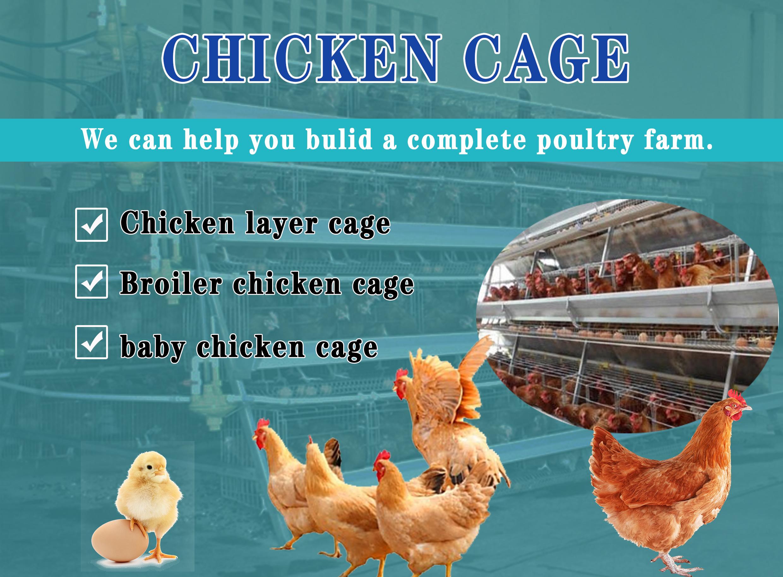 अच्छी कीमत स्वत: पोल्ट्री फार्म के लिए एक प्रकार परत चिकन पिंजरे