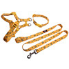 Gold color pet collar leash harness