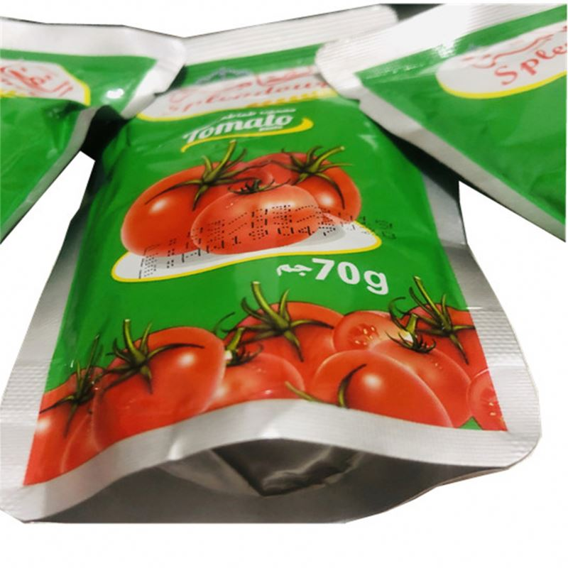 Delicious tomato paste sachets 50g producers for low price with good taste tomato ketchup sachet