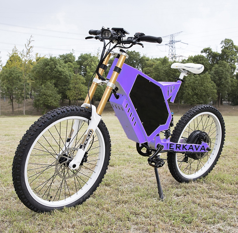 electric adult tricycle from china fatbike 3000w enduro ebike