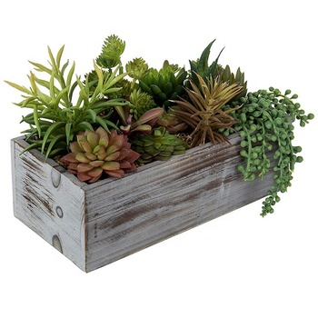 Rustic Wooden Home Decorative Assorted Artificial Succulent Plants in Wood Planter Box