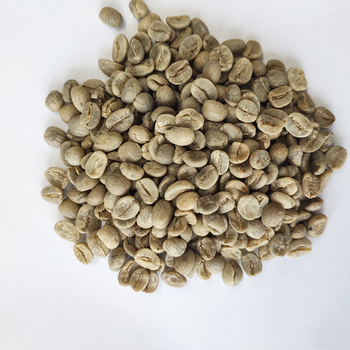 Suppliers Coffee Beans with Export Arabica Green Coffee Beans