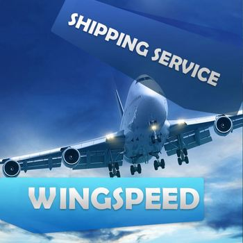 Low Price Track Express Courier Company Sea Freight Shanghai To Sydney France --Skype:nora_3861