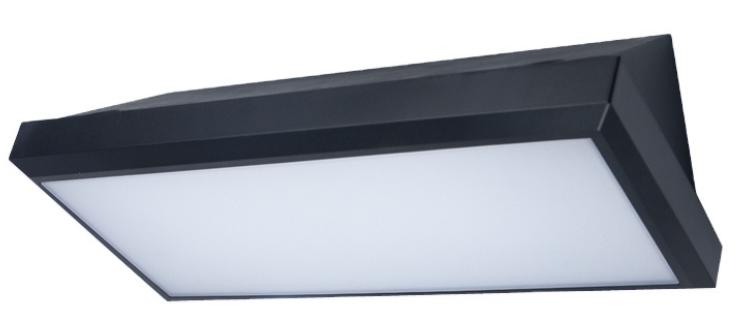 IP65 12W 20W waterproof surface mount LED outdoor wall lamp-