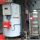 High efficiency natural gas steam boiler for soybean milk machine