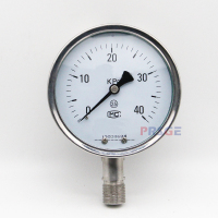 Trustworthy supplier air guages analog pressure gauge 100mm for low pressure all stainless steel
