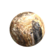 Wholesale Natural Polished petrified wood Balls Brown large Wood Fossil sphere