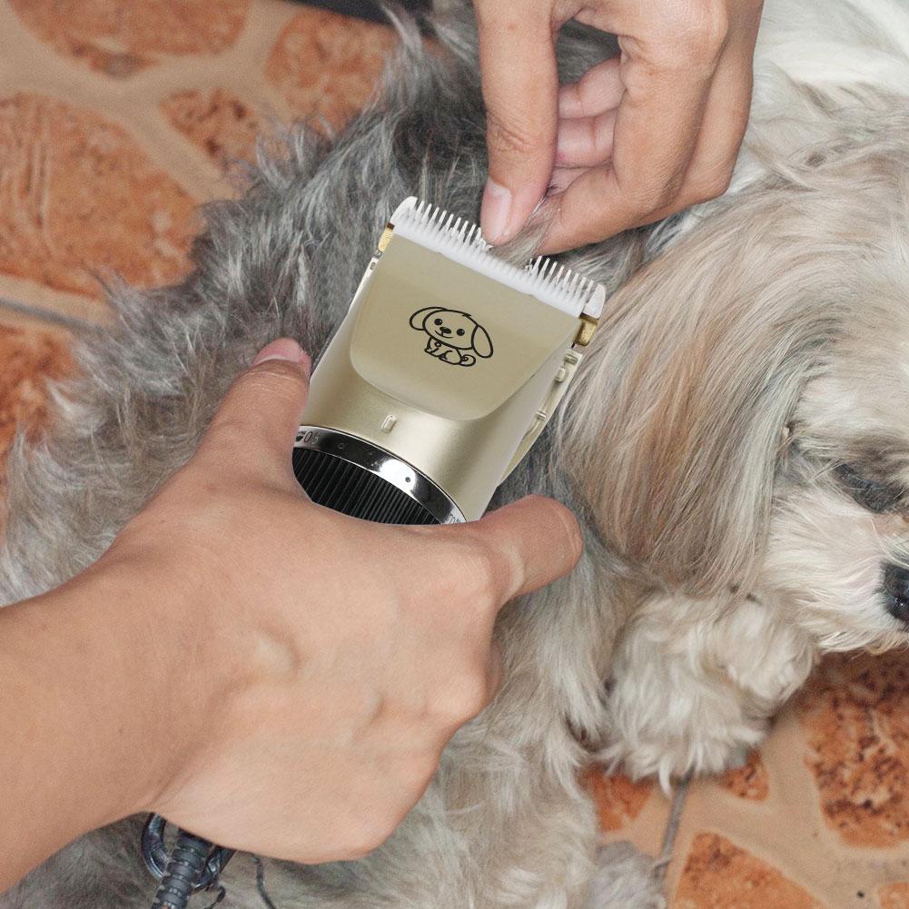 Con Chó Tóc Tông Đơ Điện Chuyên Nghiệp Vật Nuôi Chải Chuốt Máy Công Cụ USB Có Thể Sạc Lại Máy Cạo Râu Cắt Tóc Con Mèo Con Chó Cắt Tóc Clipper