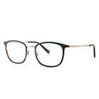 GTR19FS12173 tr 90 metal women eyeglasses frames for men